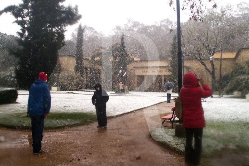 O Parque D. Carlos em 29 de janeiro de 2006