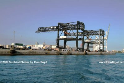 2009 - cargo cranes at the Port of Miami (#1645)