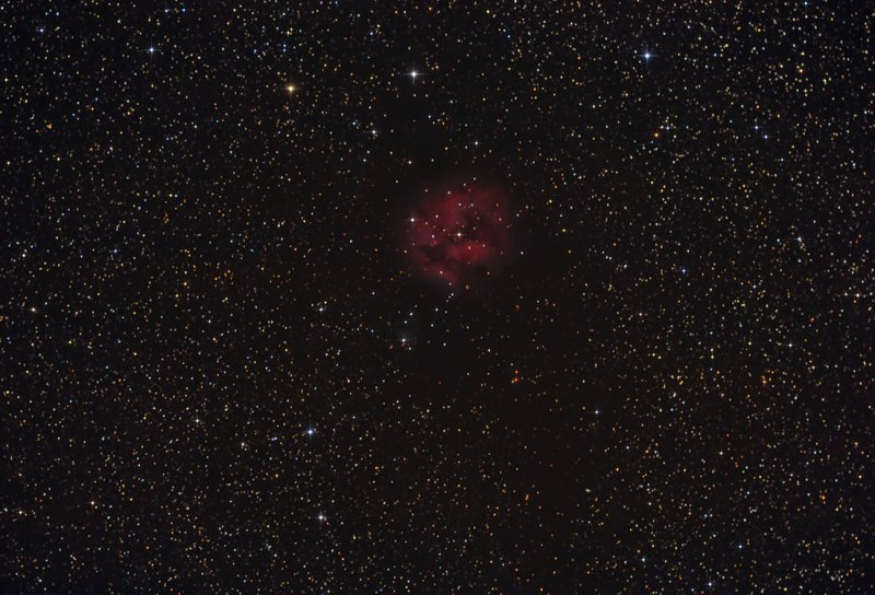 C19, Sh 2-125, IC 5146 and Barnard 168 The Cocoon Nebula