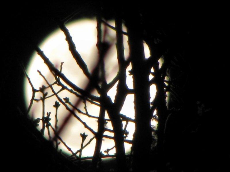 Lunar Power.jpg