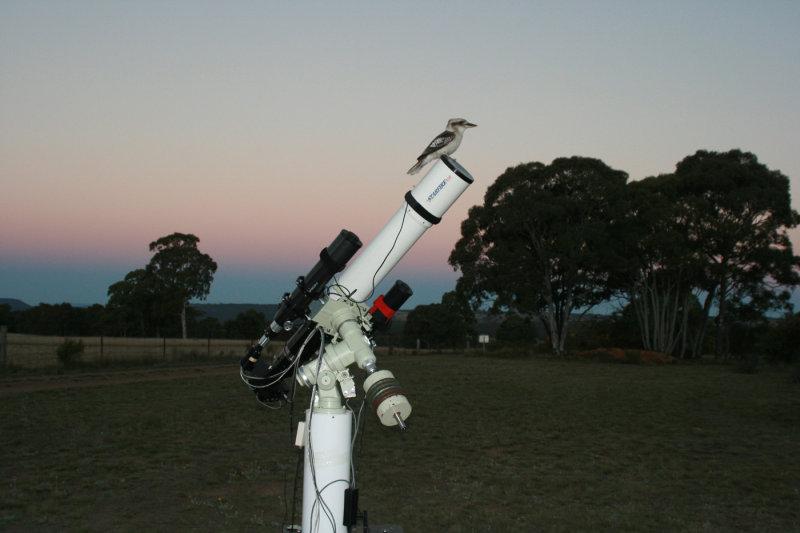 Kookaburra and Earths shadow