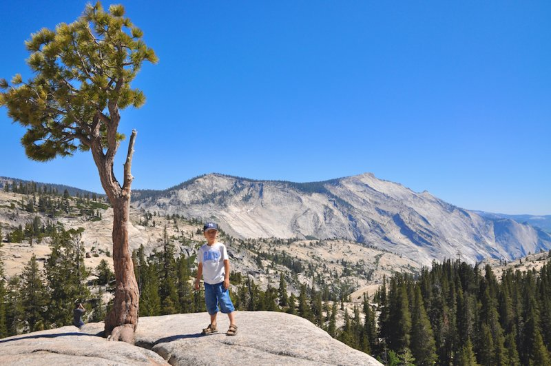 Yosemite Olmsted Point