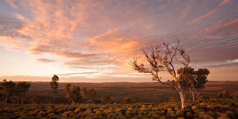Mt Vigors Sunset