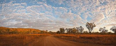 Silent Grove Sunrise Panorama