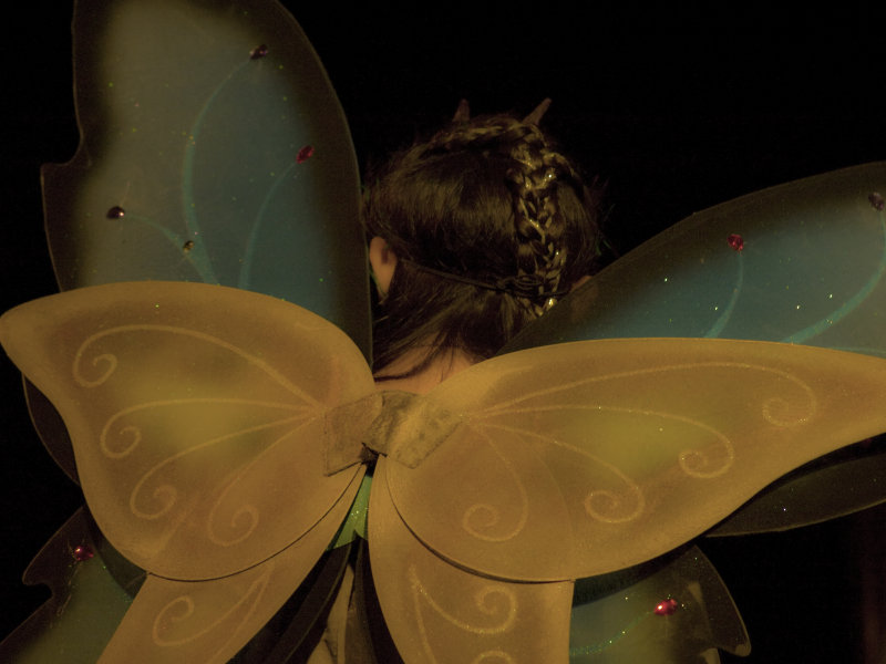 The Fairy Wings