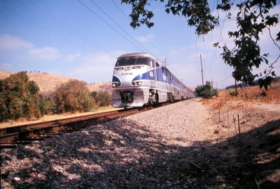 Amtrak Through the Orange Groves