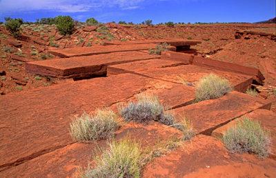 (SG42) Rectangular joint pattern in sandstone, Capitol Reef National Park, UT
