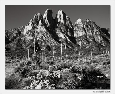 Organ Mountains Image Gallery