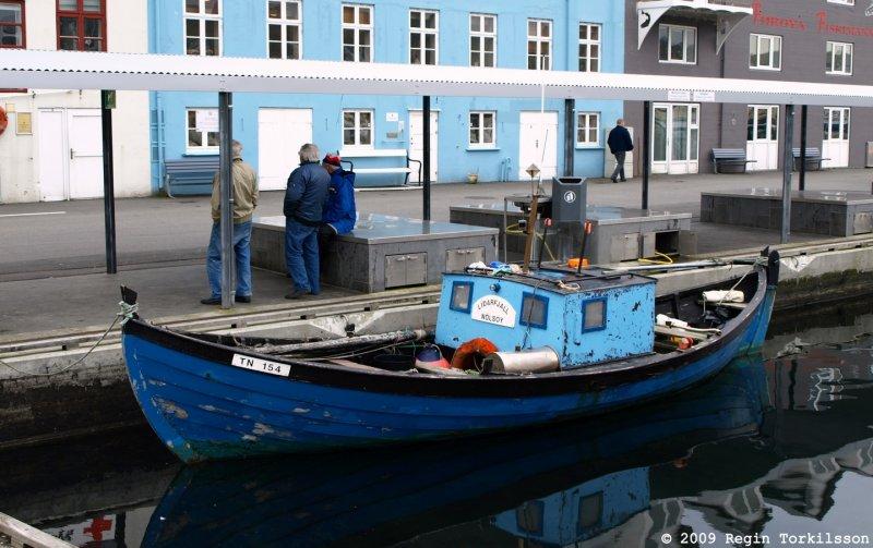 Líðarfjall TN 154