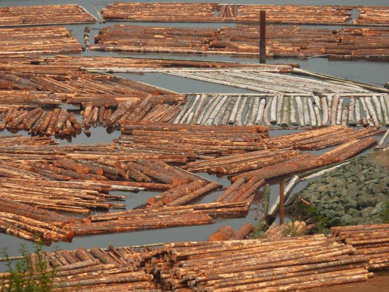 Log booms,Menzies Bay.jpg