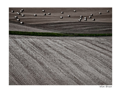 fields of Normandy