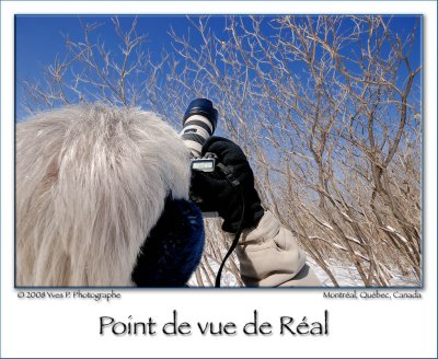 Réal's Point Of View ...