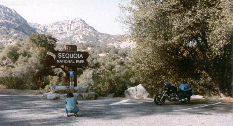 Entrance to the Sequoias