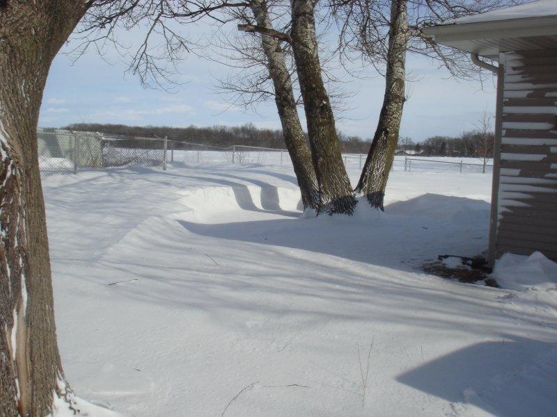 Back yard view...neet snow drift