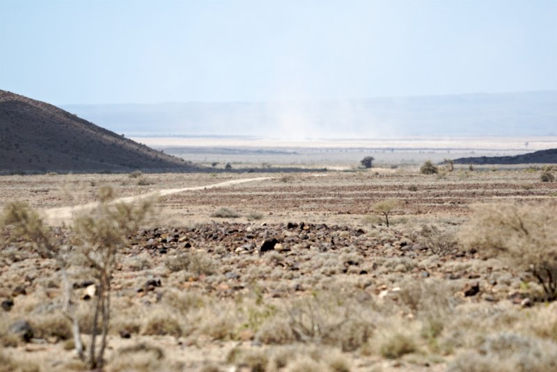 Djibouti  530.jpg