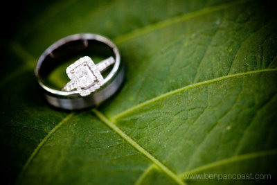 Wedding photo at Frederick Meijer Garden in Grand Rapids Michigan.