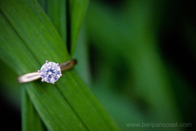 Wedding ring, detail, blue dress barn