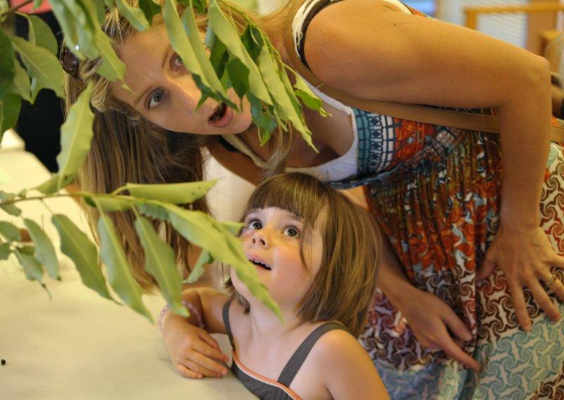 Broadmoor Caterpillar Show:  Generations