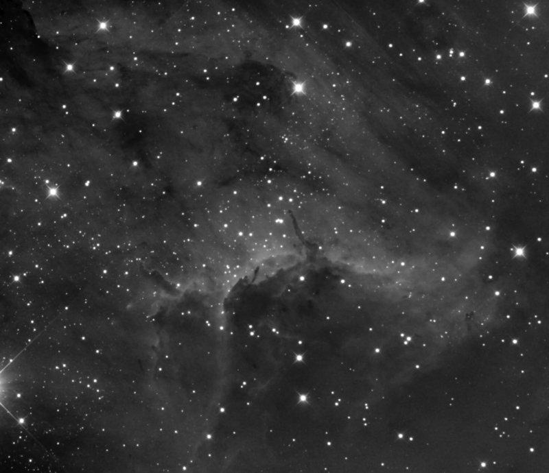 Pelican nebulae