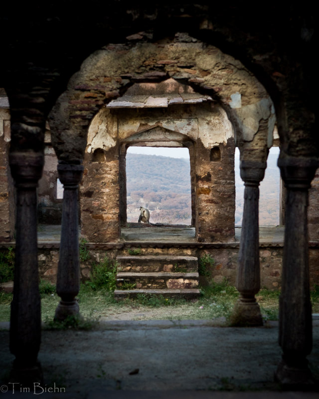Ruins Of Fort Ranthambore