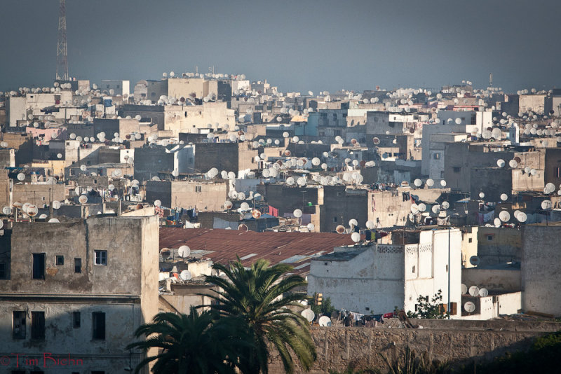 Roof Tops Of Casablanca