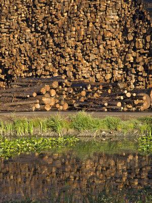 <B>Lumber Mill</B> <BR><FONT SIZE=2>Weaverville, CA, August, 2007</FONT>