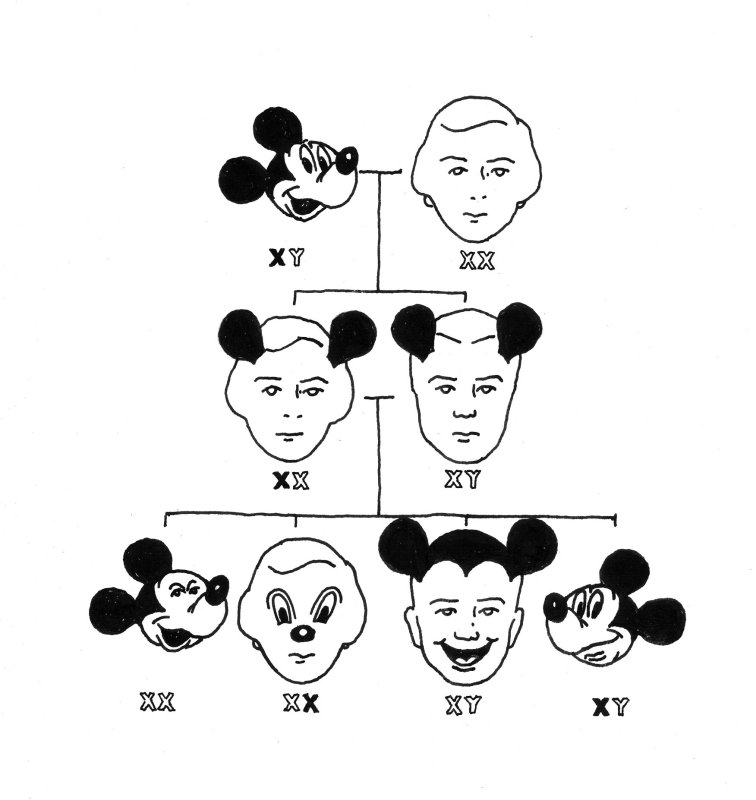 X-Y_Mickey Mouse