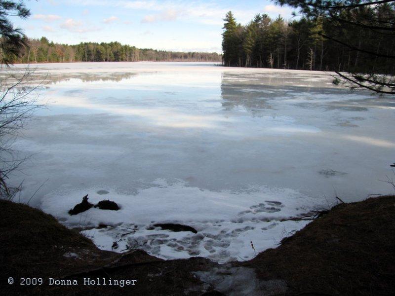 Puffer Pond on Sunday