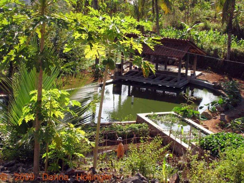Iskandars Garden