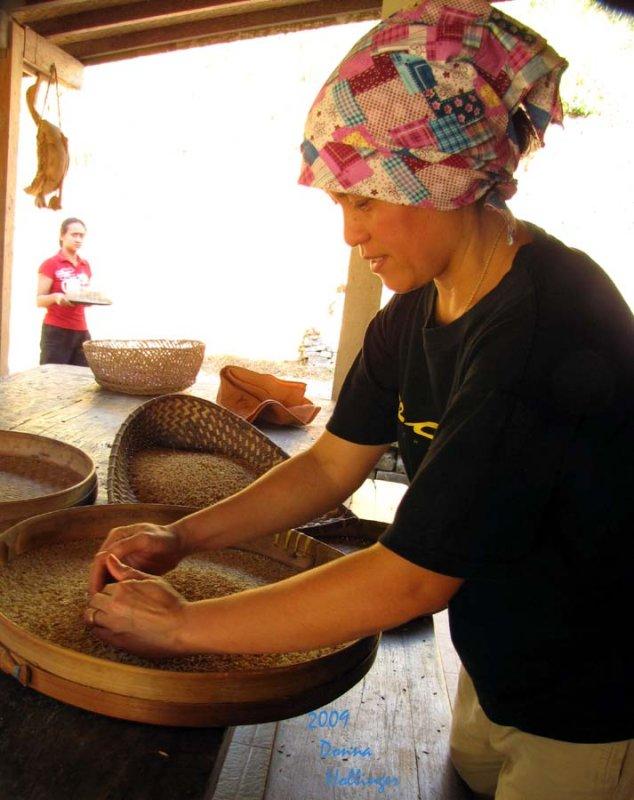 Darmila Threshing Rice