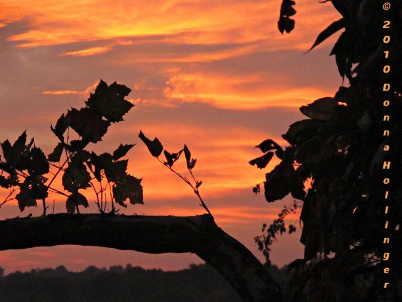 Burnished Sunset at Fresh Pond Tonite