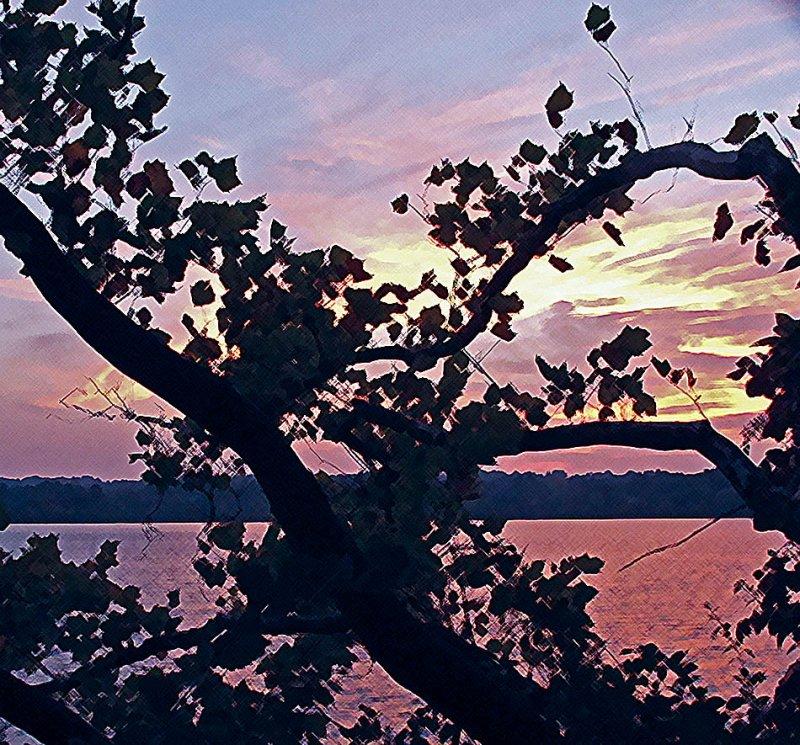 Crosshatched Sunset photo