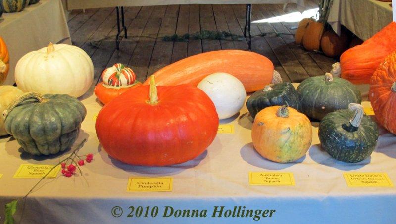 Pumpkin Demonstration