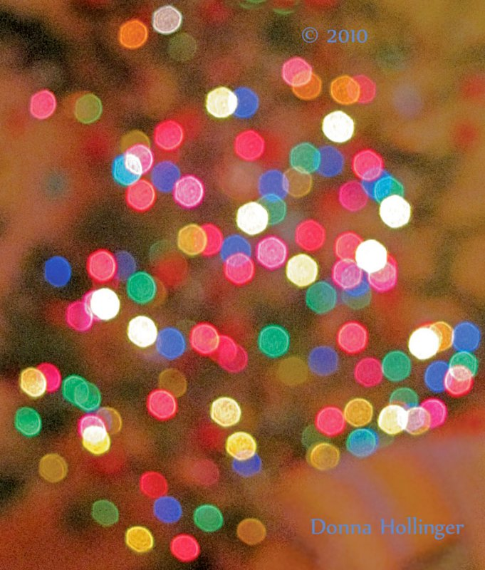 Christmas Lights At Annis