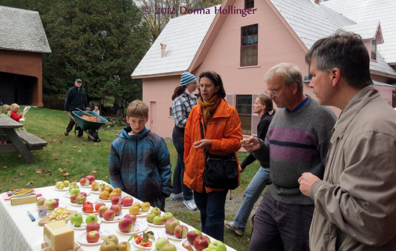 Tasting Different Types of Apples