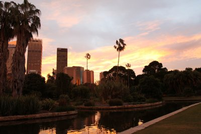 Sydney Skyline from the Botanical Garden