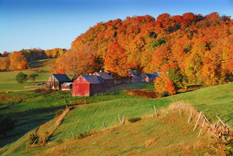 62 Jenne Farm Vermont.jpg