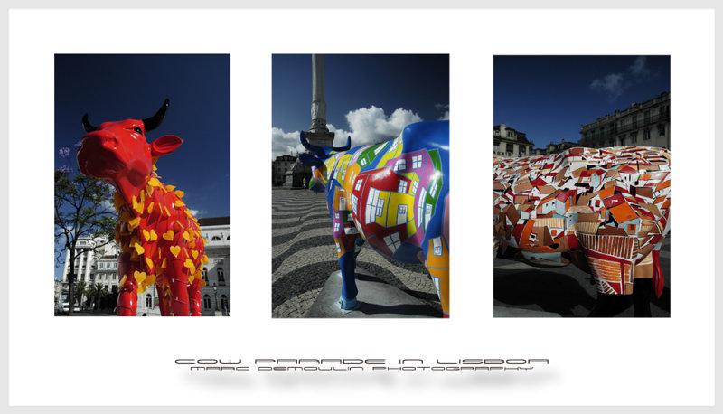 Cow parade in Lisboa