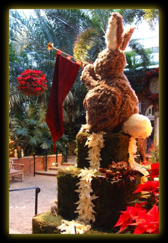 2005 Christmas at Phipps Conservatory