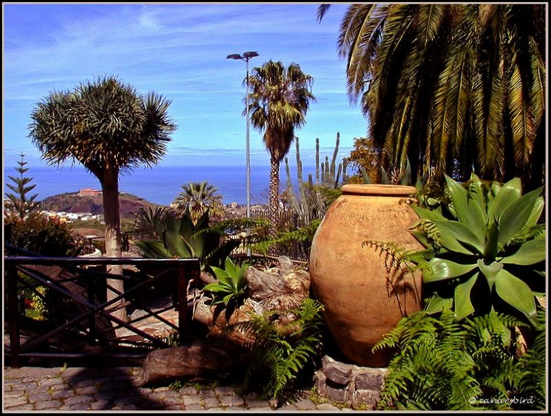 View from Casa Lercaro