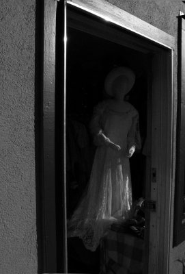 Apparition, Greenville, California, 2008