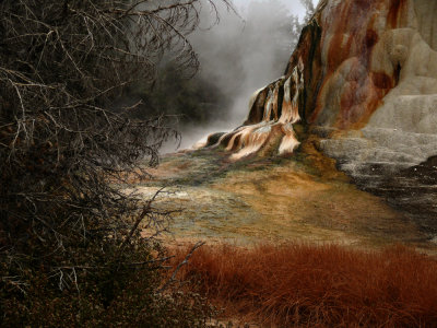 Colors, Mammoth Hot Springs, Yellowstone National Park, Wyoming, 2008