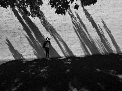 The challenge of photography, Scottsdale, Arizona, 2009