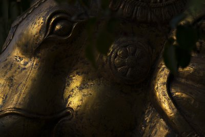 Brass Elephant, Santa Fe, New Mexico, 2010