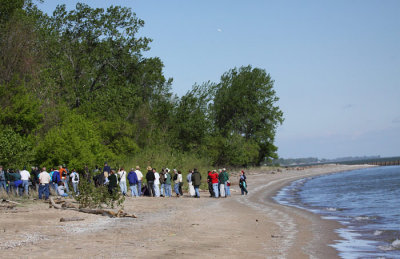 Golden-winged Warbler draws birders to lakeshore (USA)