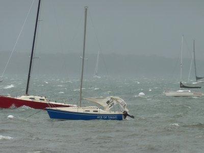 Orinoco Adrift