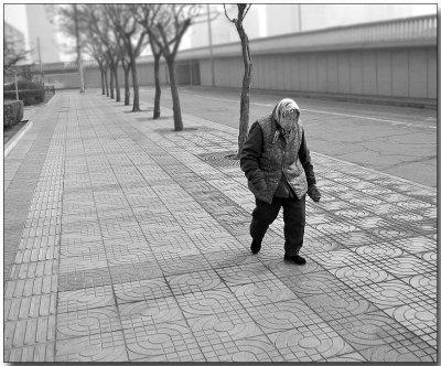 Beijing winter monocolor