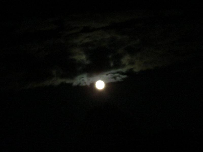 Harvest Moon_9-30-2012 116.JPG