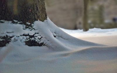 Et profondément sous la neige...