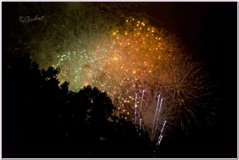 Fireworks in Rain 2010